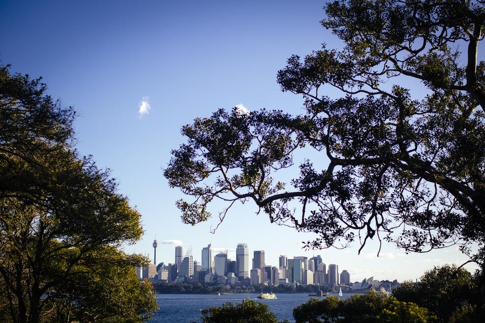 Athol_Hall_Wedding_Sydney_Harbour.18.jpeg