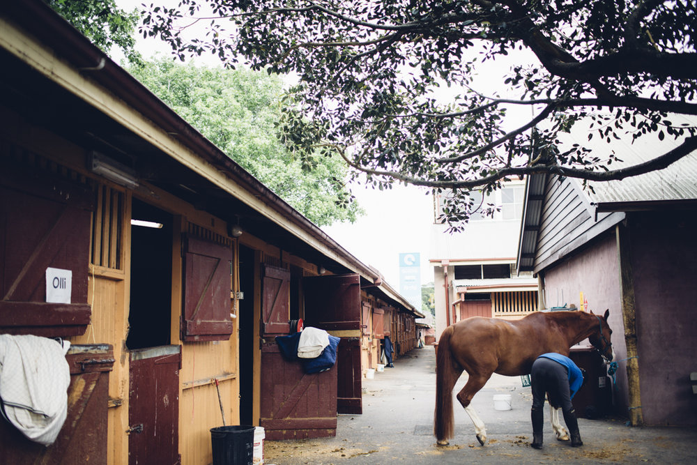 JED_Centennial_Park_Equestrian_Centre.088.jpeg
