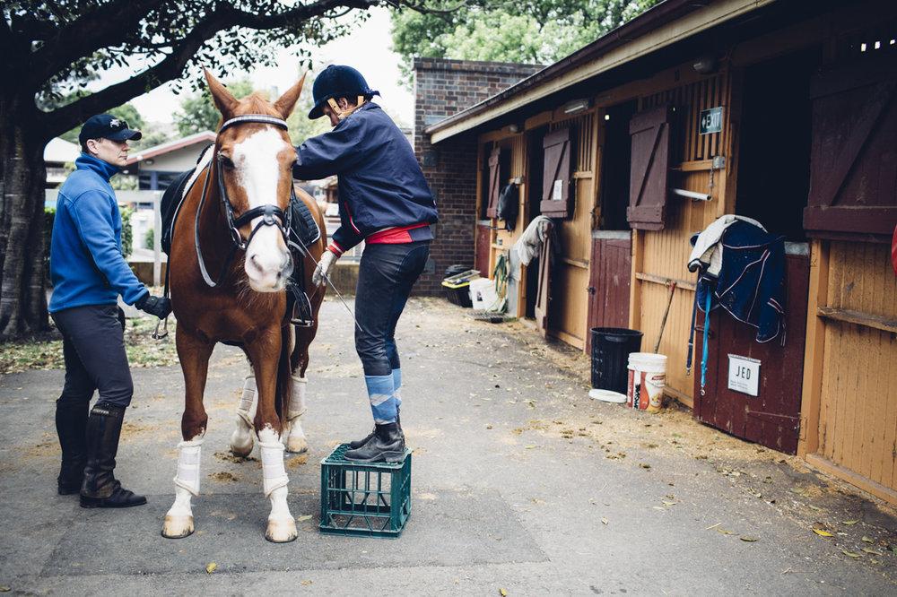 JED_Centennial_Park_Equestrian_Centre.093.jpeg