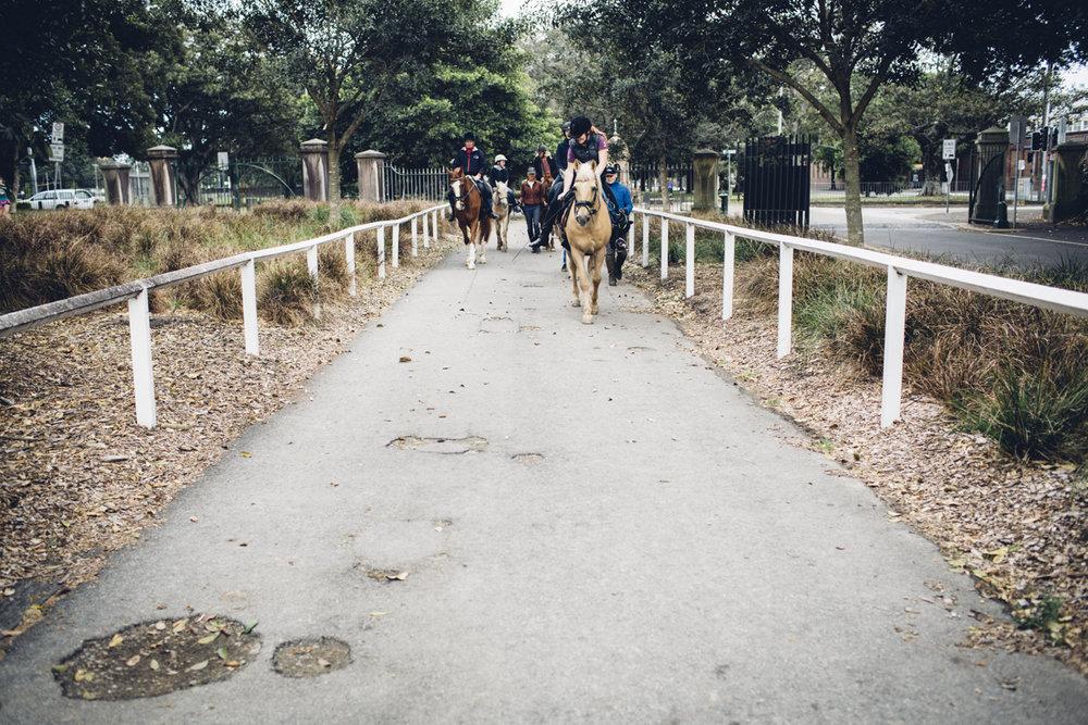 JED_Centennial_Park_Equestrian_Centre.105.jpeg