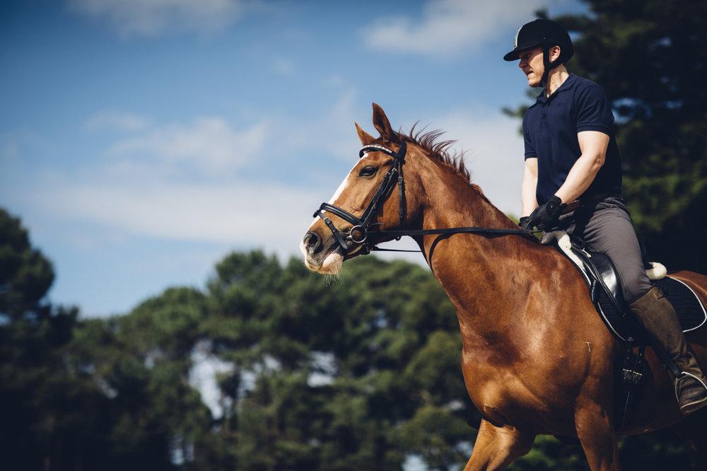 JED_Centennial_Park_Equestrian_Centre.005.jpeg