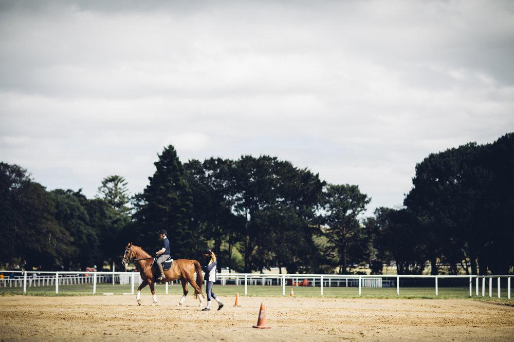 JED_Centennial_Park_Equestrian_Centre.033.jpeg