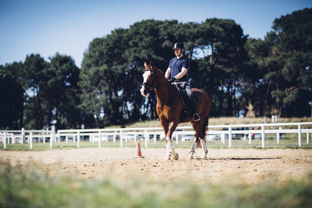 JED_Centennial_Park_Equestrian_Centre.025.jpeg