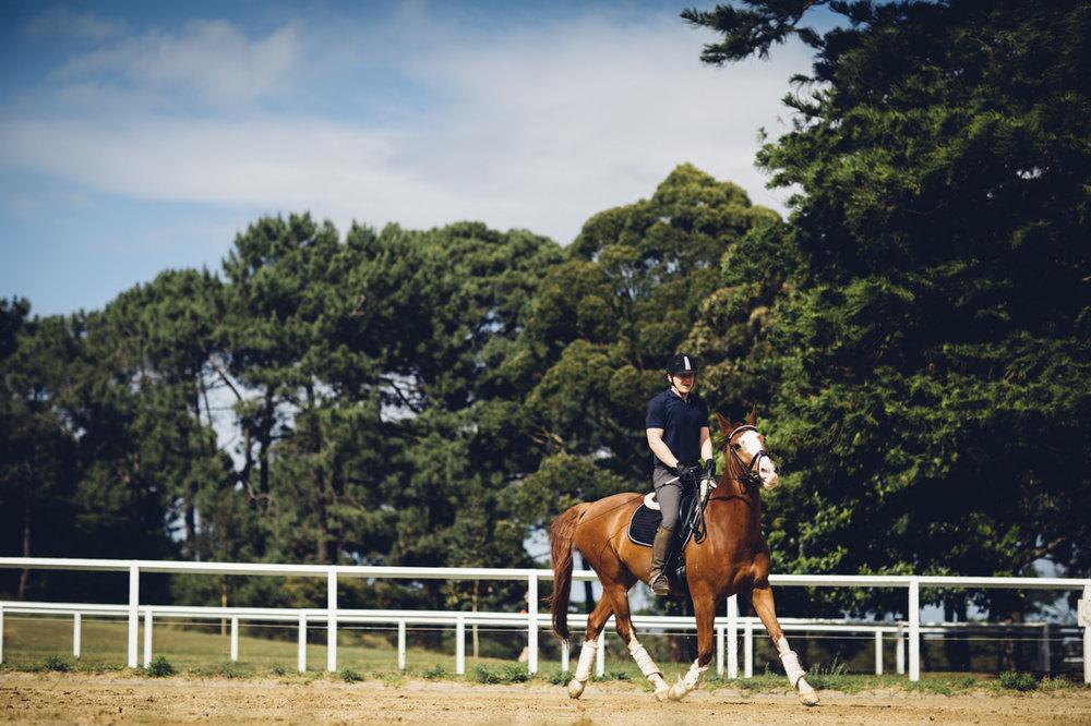 JED_Centennial_Park_Equestrian_Centre.002.jpeg