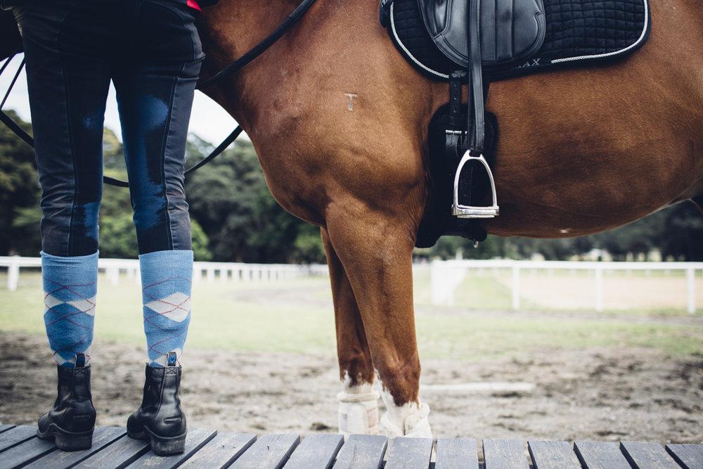 JED_Centennial_Park_Equestrian_Centre.109.jpeg