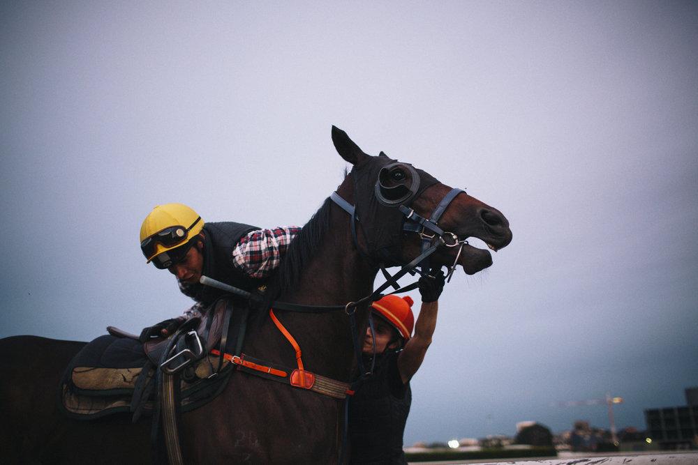 randwick_racecourse_australian_turf_club-3473.jpg