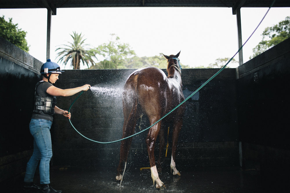 randwick_racecourse_australian_turf_club-3808.jpg