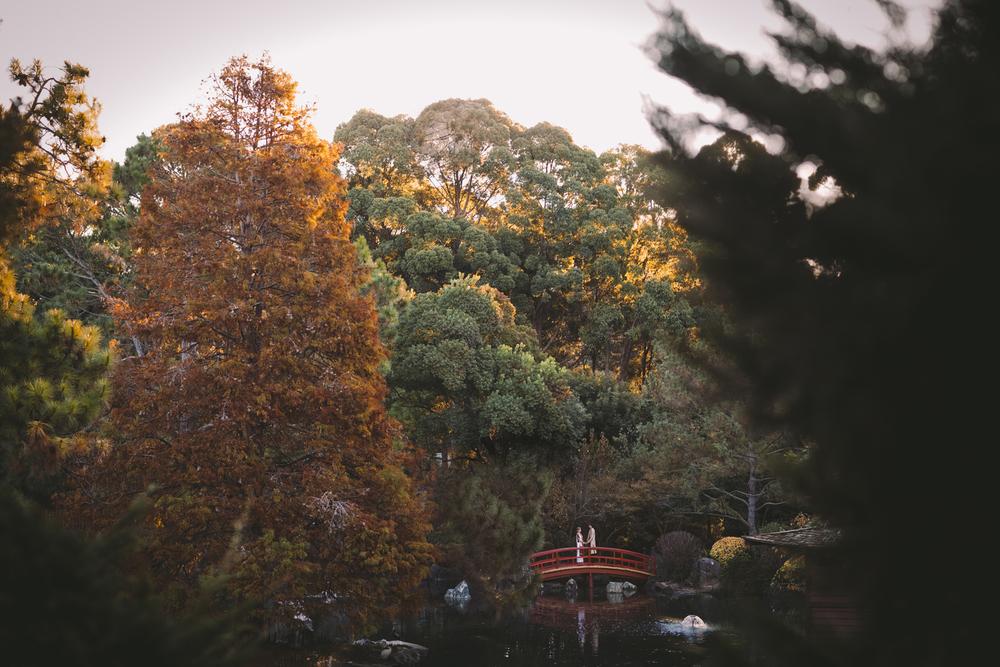 Andrea&neevrav - hindu wedding, auburn botanical gardens