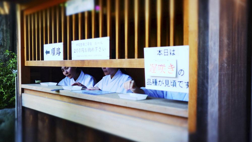sheridan_nilsson_japan-64.jpg