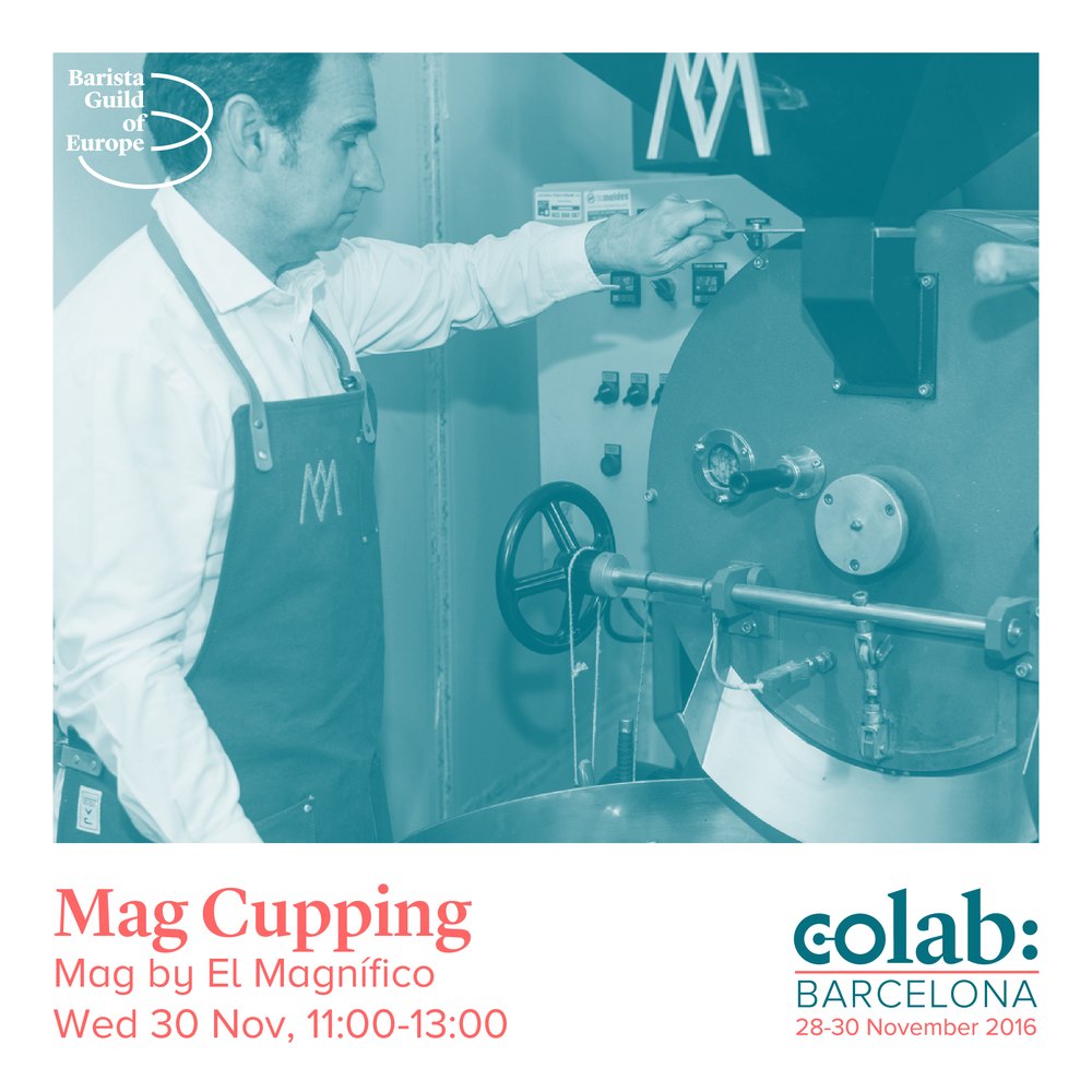 Mag Cupping