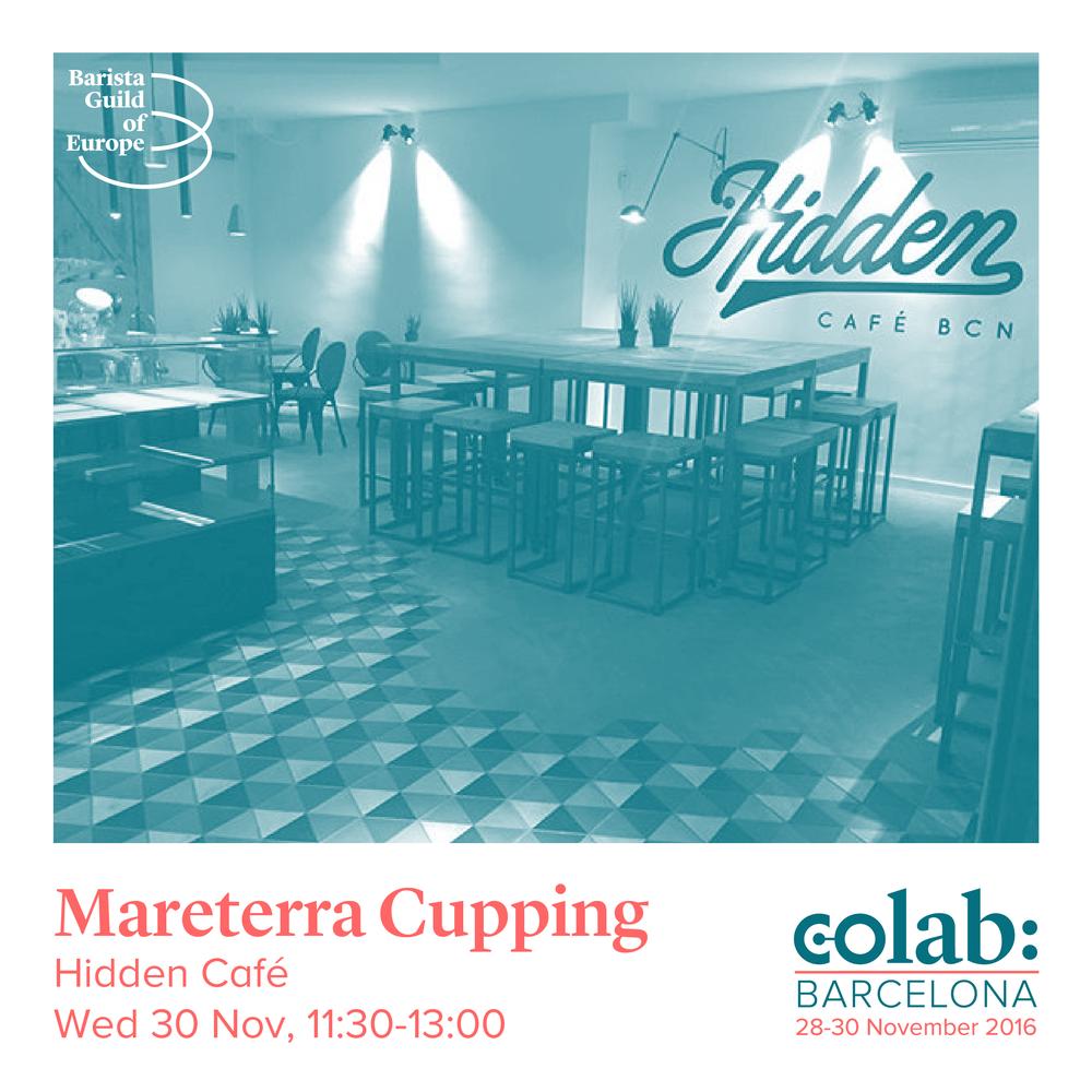 Mareterra Cupping