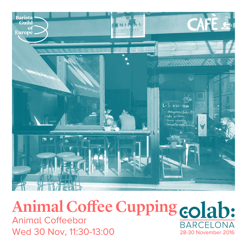 Animal Coffee Cupping