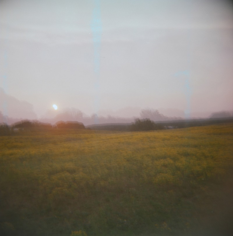 Light     — Dorn