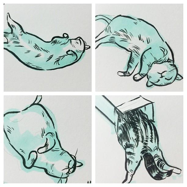iamnomes: Maru brush pen drawings.