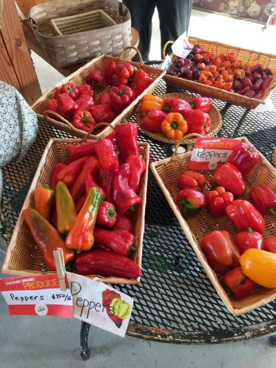 Some of the peppers for sale this week at The Good Earth in Hope, RI