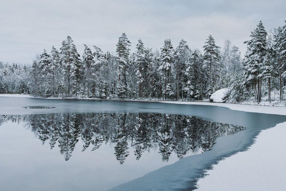 metsä ja lampi jäässä-1.jpg