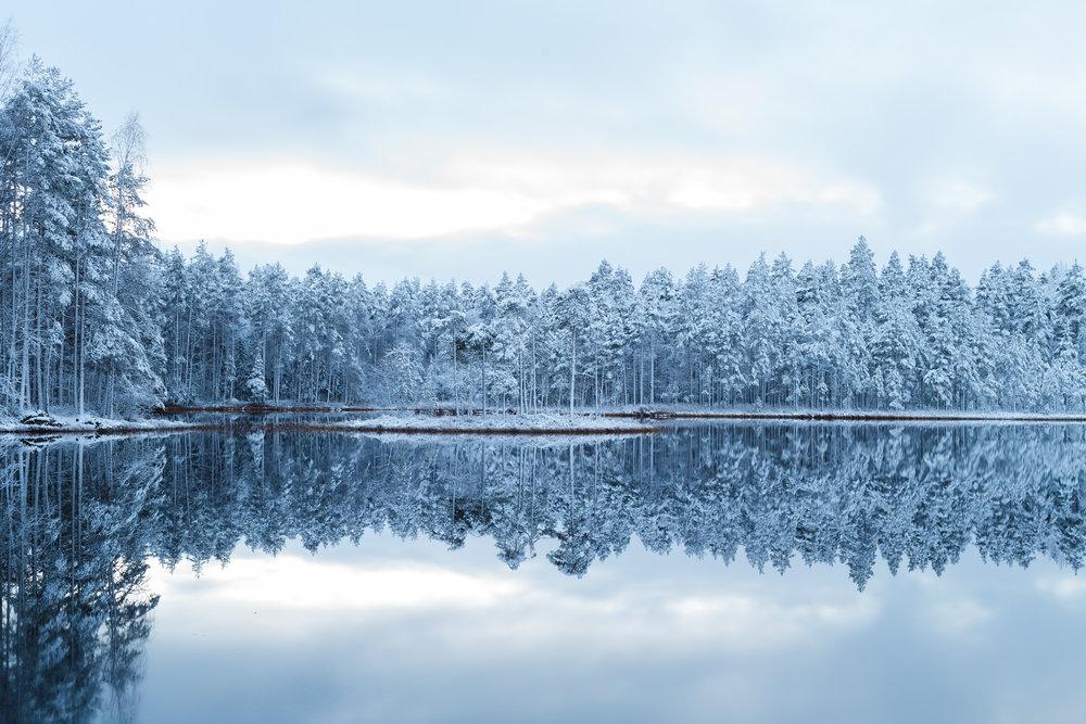 metsä ja lampi talvella2.jpg