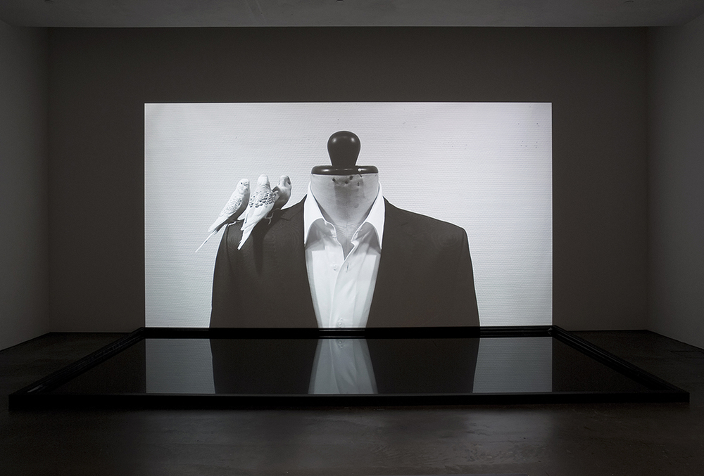 Saara Ekström: Man Before the Mirror, 2011. HD Video Installation.