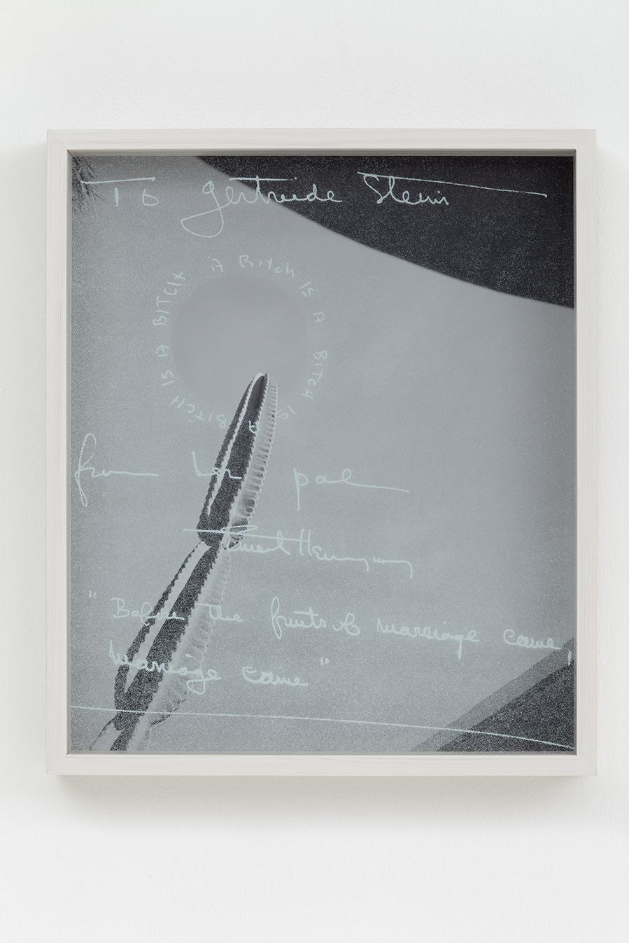 Heli Rekula: To Gertrude Stein, 2013, inkjet print on Baryte paper, silk screen on glass, framed, 40x34cm.
