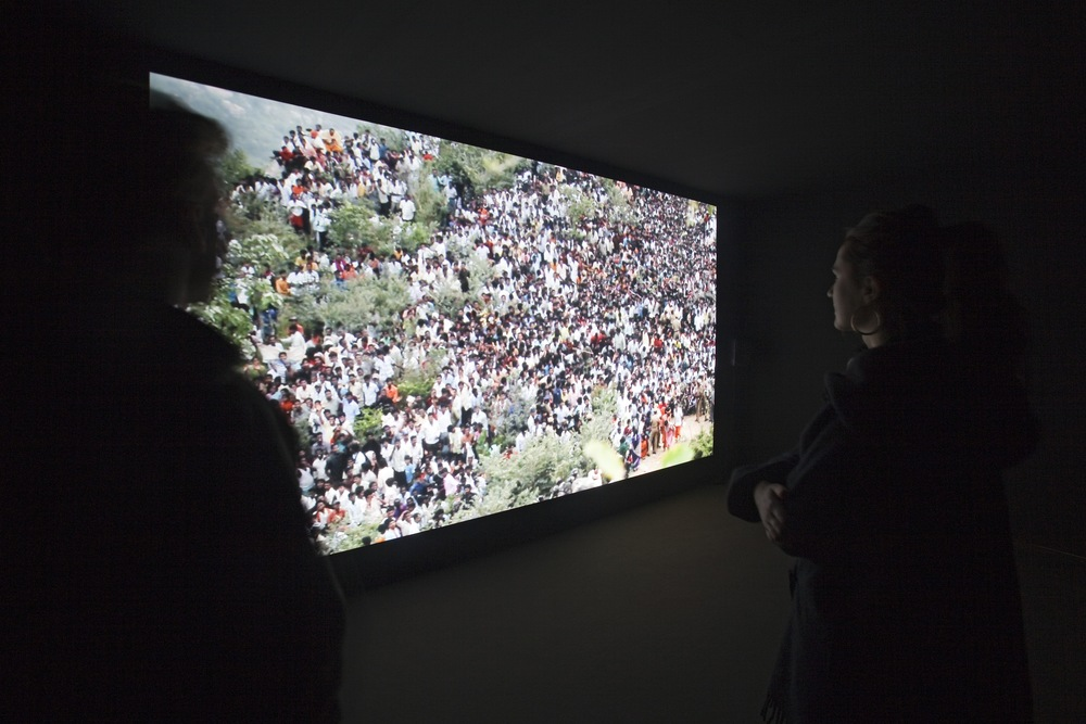 Camille Henrot, The Strife of Love in a Dream, 2011. Video, 11'37. Courtesy the artist, kamel mennour Paris, Metro Pictures New York and Centre Pompidou Paris. Installation view.