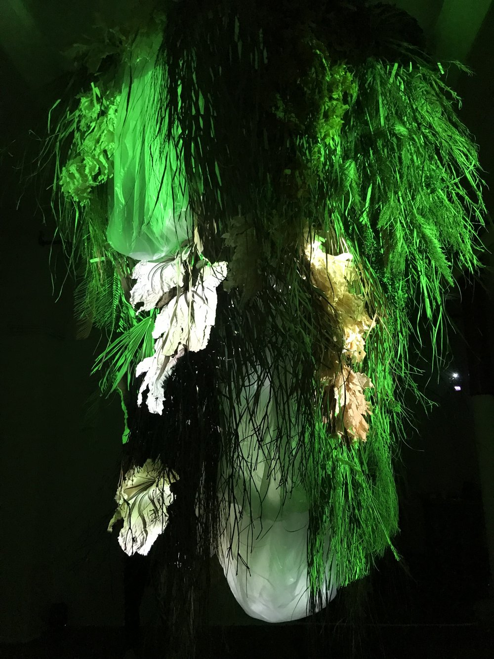 During their 2-month residency, designer Laura Väinölä and film maker-composer Ezra Gould made a site-specific installation dealing with the complex relationship of nature and culture. The installation was on view at Triangle Arts Association in June 2018.