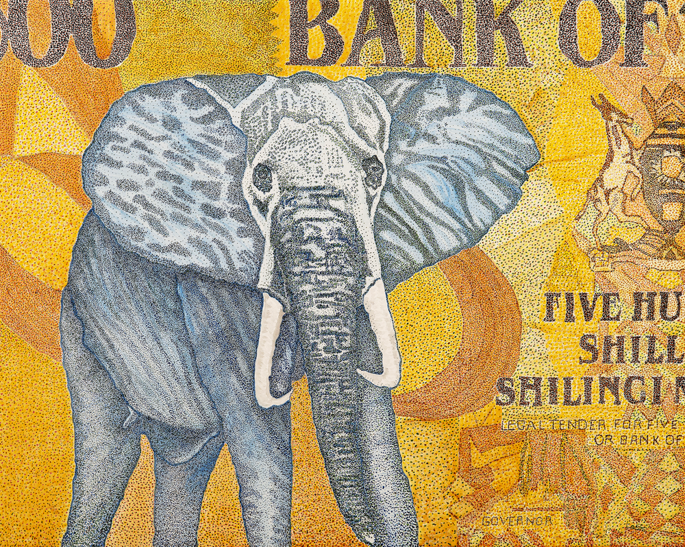 Endangered Species Series: African Elephant