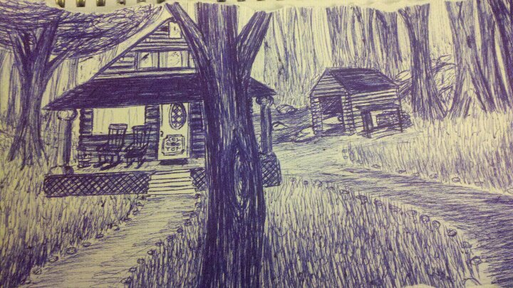 Cabin   Pen & Ink / 2011