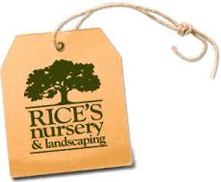 rice's nursery.jpg