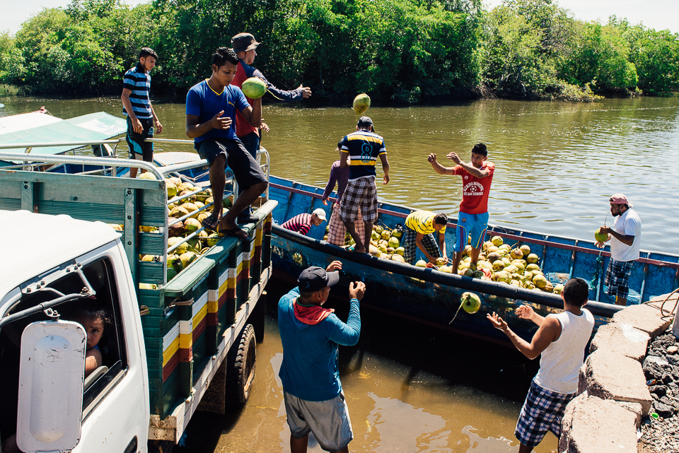 In Puerto Parada, workers unload coconuts from a boat into a truck for distribution. The coconuts are grown throughout a string of small islands, where they are picked by hand and placed in the boats.