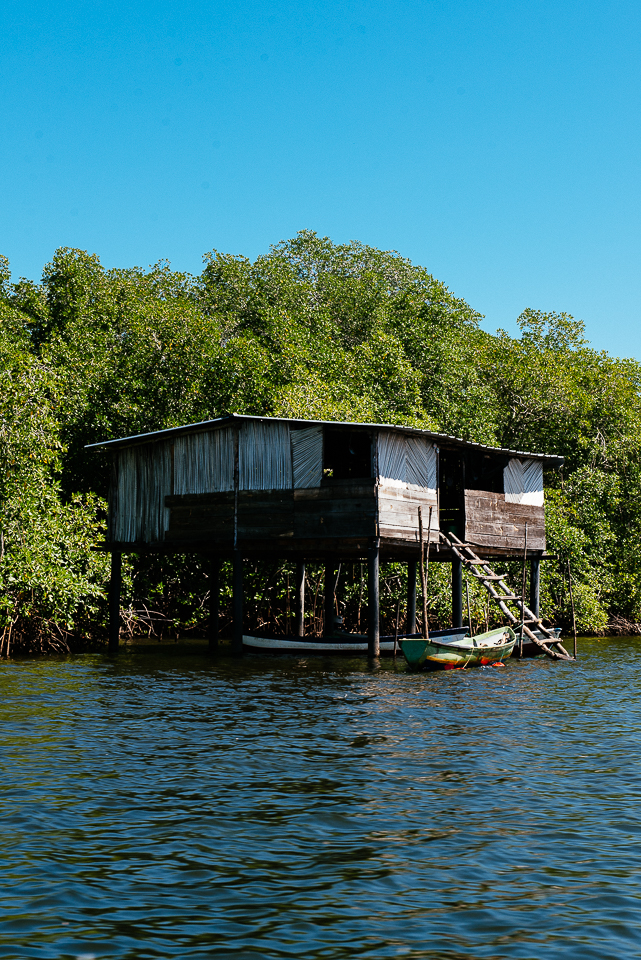 We boarded a boat and headed out into the Jiquilisco Bay, which includes a delta of mangrove forests. Small fisherman's homes like this one dot the coastline.
