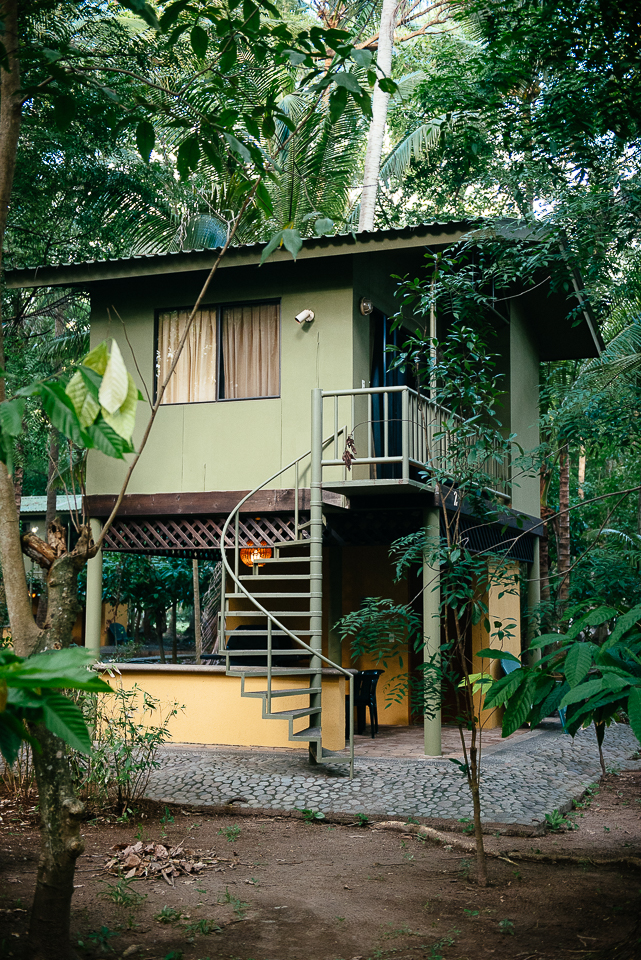 We stayed in these jungle casitas at Puerto Barillas, and it felt like a verdant, emerald-hued dream to wake up in the middle of all that lush greenery.