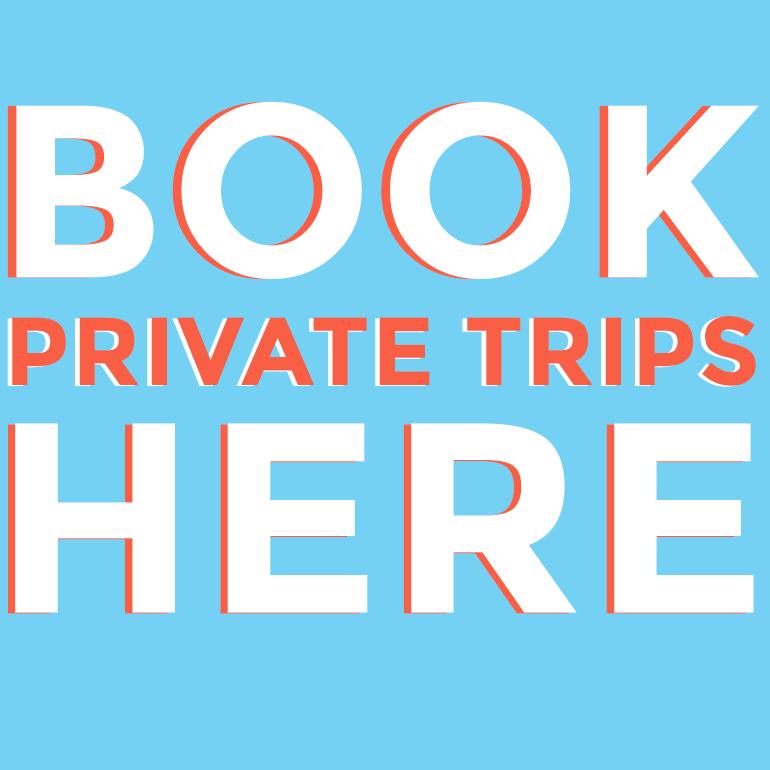El Camino Travel Private Tour Services Nicaragua
