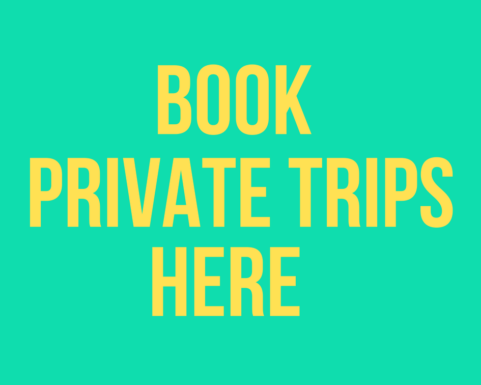 Book private travel to Bogota Colombia with El Camino Travel