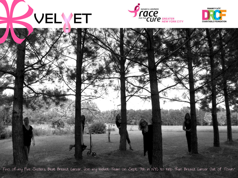 "Join the Velvet Team on September 7th, 2014 in NYC at Central Park to help ""RUN BREAST CANCER OUT OF TOWN"" at the Susan G. Komen Race for the Cure."
