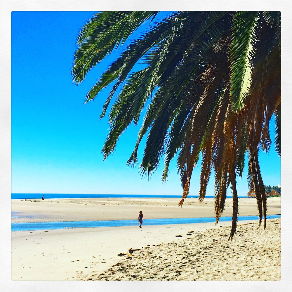 Surfrider Beach,Malibu