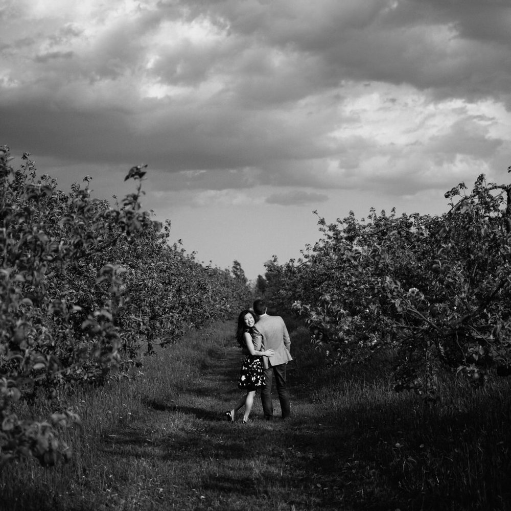 Mont Saint-Gregoire engagement photos in Field.jpg