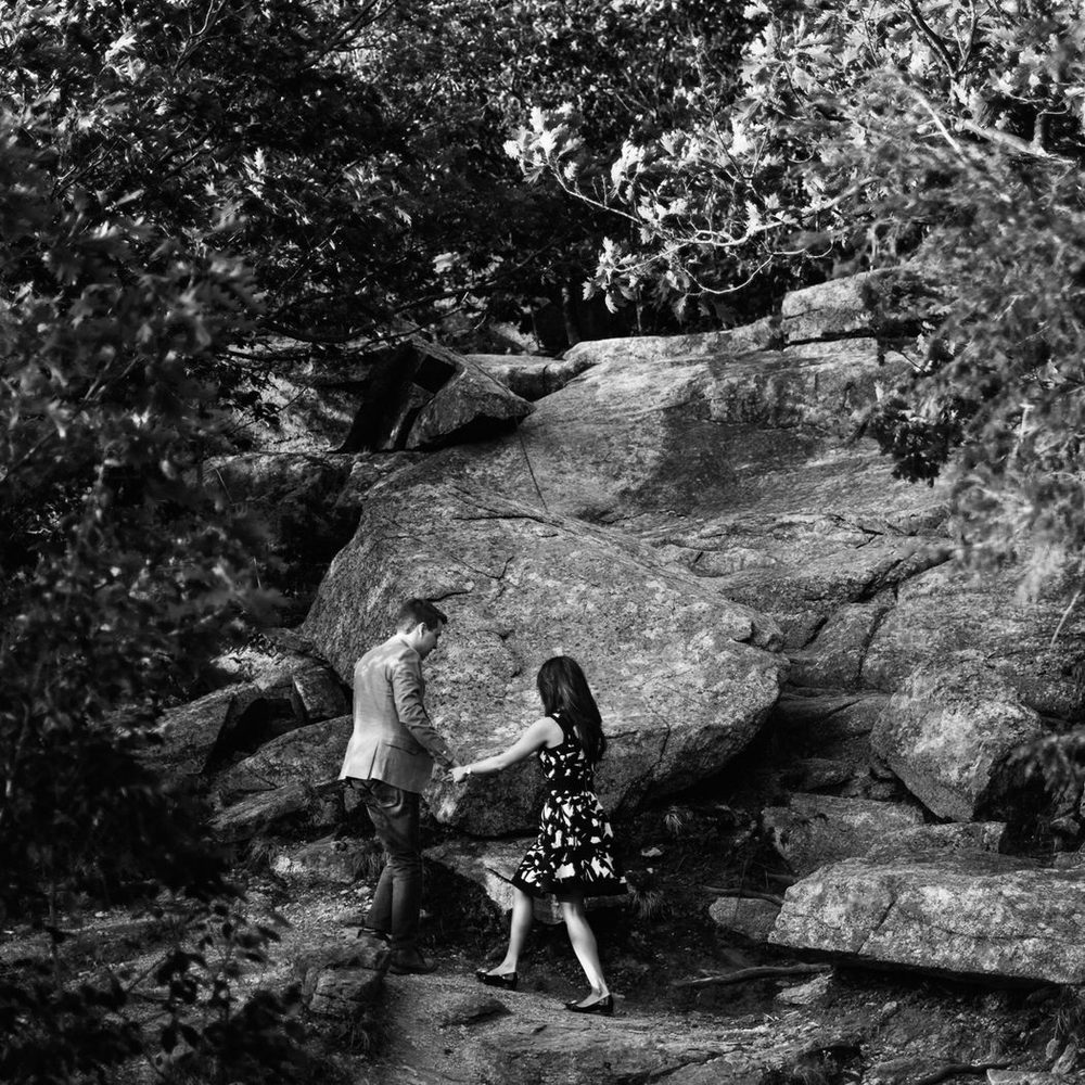 Mont Saint-Gregoire engagement photos