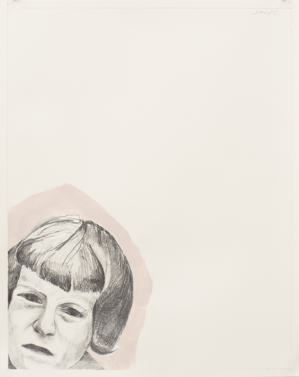 "Nobody Puts Baby In a Corner (Ann) , graphite, Flashe on paper, 24"" x 19"""