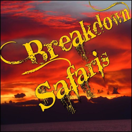 Breakdown Safaris