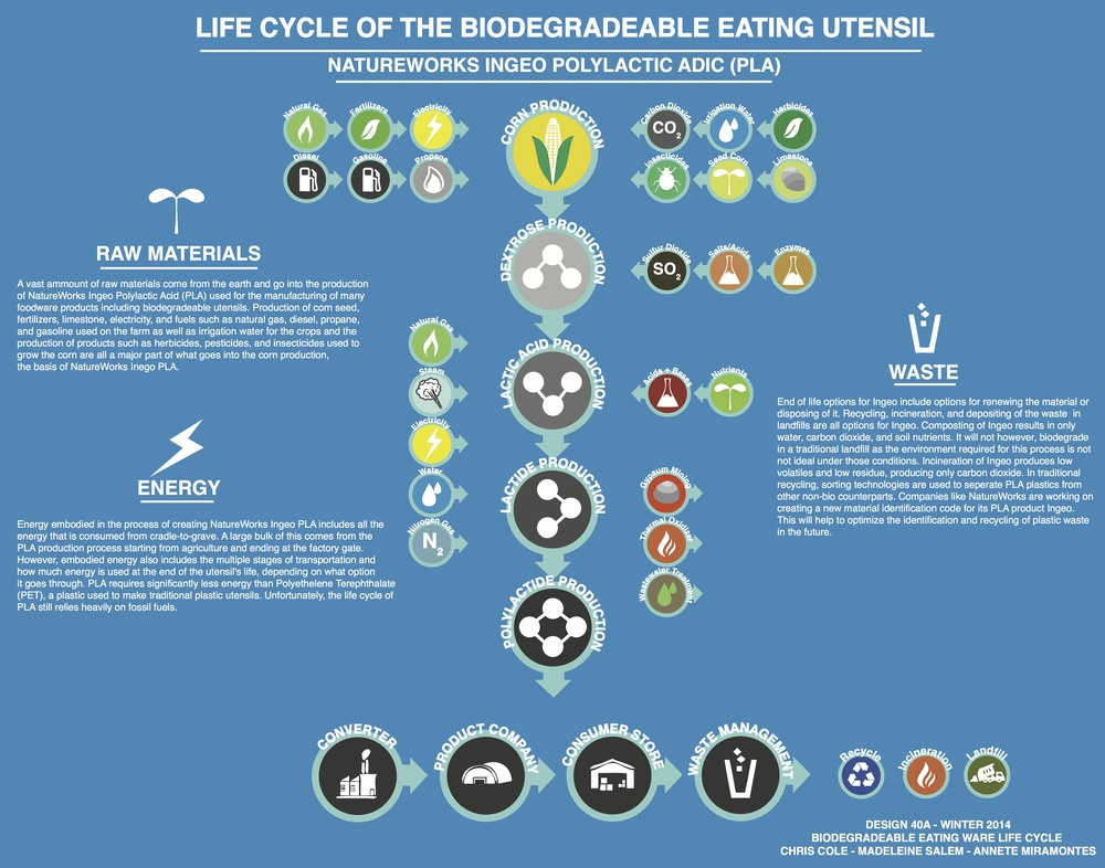 Biodegradable Eating Utensil Life Cycle