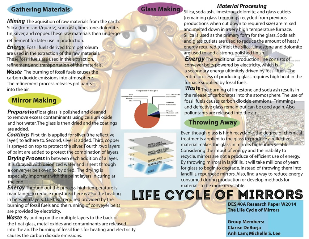 Mirror Life Cycle