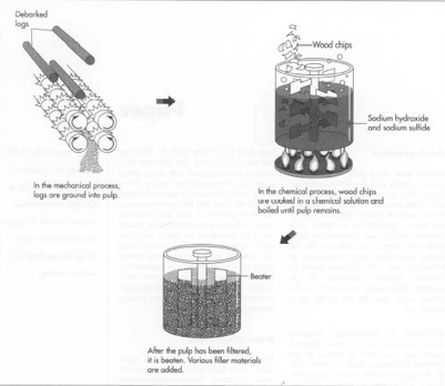 Figure 1: Paper production using wood pulp. Digital image.  How Products Are Made.  Advameg, Inc., 2014. Accessed March 9, 2014.