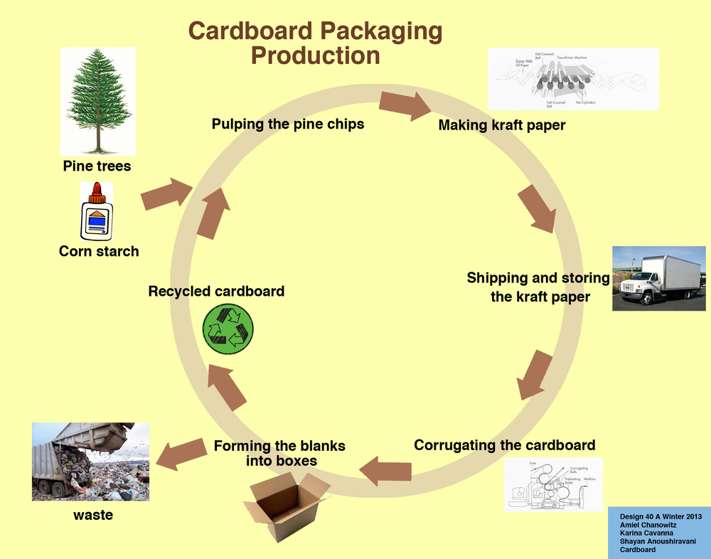 Cardboard Packaging Life Cycle