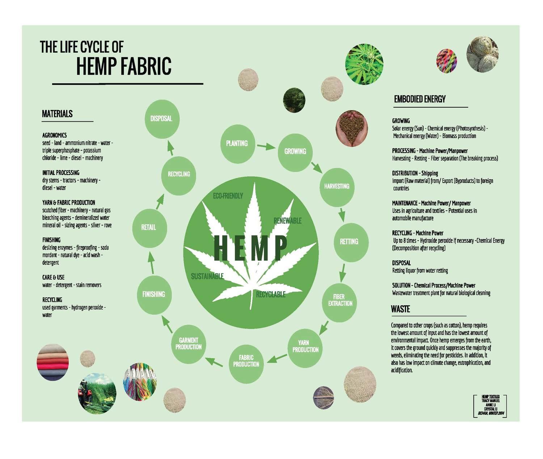 Growing Hemp - Climate CoLab