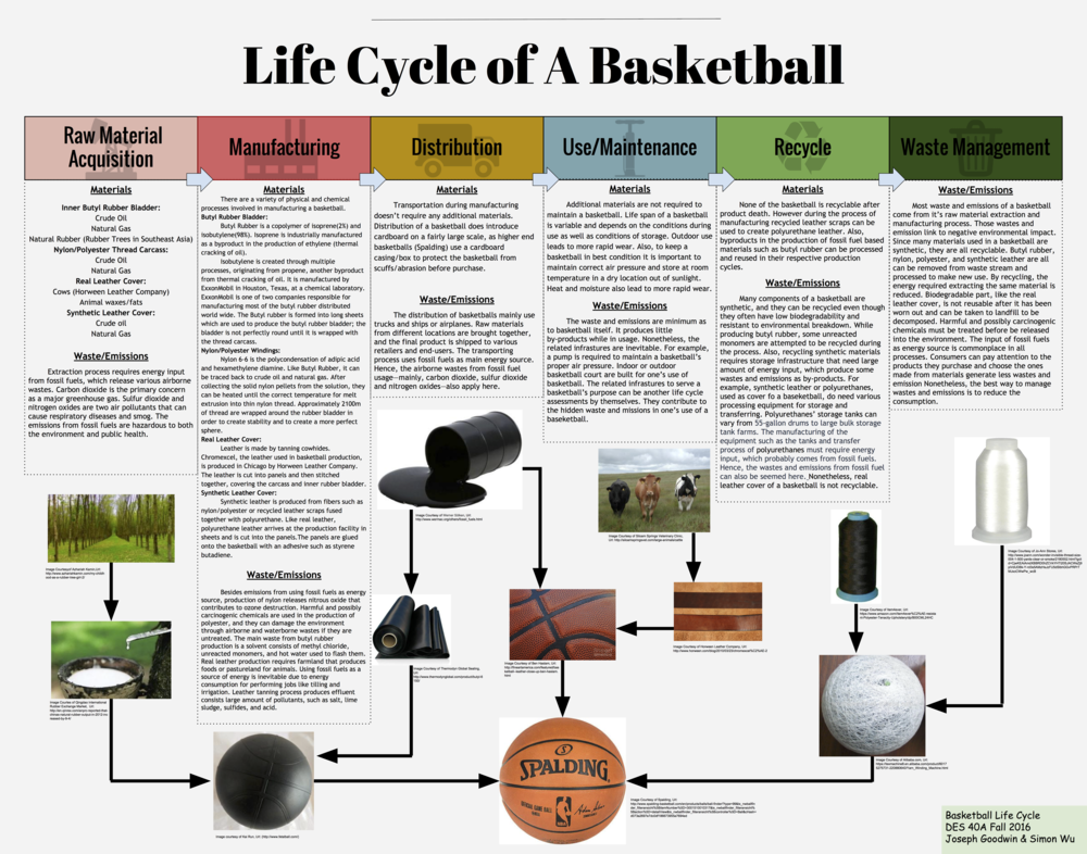 "Joseph Goodwin Professor Christina Cogdell Design 40A 1 December 2016 Life Cycle Analysis: Materials of a Basketball Over the past few years basketball has begun to rapidly grow in popularity. It's a fast paced game that can be exhilarating to watch, but few people consider the materials used to create the basis of the sport; the basketball. The modern basketball has 3 main components; a rubber bladder, a leather/composite cover, and a nylon/polyester carcass. Recreational balls have a synthetic leather or polyurethane leather cover while professional ones are made with real leather. The material chosen does change the properties the ball exhibits during use. For example a leather ball will bounce higher than a synthetic leather one, but the synthetic leather one is far less slippery. For manufacturing purposes, synthetic leather basketballs have replaced leather in order to keep costs low and profits high. One brand of basketball I will be referencing  is Spalding, as they are the brand that produces the ball for professional play (NBA) as well as many different recreational versions. I will first examine each component of a basketball separately to isolate the raw materials acquisition as well as the manufacturing/processing required to get to the production of a basketball, as this is where a majority of the materials aspects of a basketball's lifecycle is focused. I will then touch on both the use of a basketball as well as the end of its life cycle. A simple product like a basketball may not contain many different material components, but further examination of its lifecycle reveals the extensive story behind the materials that create an iconic product.     The rubber bladder is by far the most consistently manufactured part of a basketball in terms of materials used. Almost all basketballs have a butyl rubber/natural rubber bladder. Butyl rubber is ideal because of its high impermeability to air which allows it to hold air without losing any considerable pressure. Another quality that is essential is its elasticity, which is responsible for the ability to bounce off the ground to an height useful for play. Natural rubber has an even greater elasticity and allows for a bounce that loses even less energy and returns to an even higher height. Over time it has become standard to use a mixture that is predominately butyl rubber with some natural rubber in order to maximize the air retention as well as the rebound height.  A ratio of 85% butyl rubber to 15% natural rubber is considered standard. The inner bladder is responsible for a large portion of the basketball's overall weight. To put this in context, the inner bladder usually weighs somewhere between 140-150g while the total weight of a deflated basketball is somewhere between 465-475g. This means that butyl rubber is about a quarter of the total weight.     The primary materials of butyl rubber are crude oil as well as natural gas, which are found and extracted in various locations around the world. It takes several chemical processes as well as multiple additives to reach the final product. Because of this, it was very difficult to attempt and pinpoint an exact location in which the primary materials were extracted. Butyl rubber is a copolymer composed of 98% isobutylene and 2% isoprene. Isobutylene is produced through several processes, originating from propene collected from thermal cracking of crude oil. Similarly, isoprene is a byproduct of ethylene that is produced during thermal cracking as well.  Exxon Mobile and Polysar Rubber Corp are responsible for producing most of the butyl rubber for the world. The Exxonmobil chemical production laboratory is based in Houston, Texas.     Conversely to the obscurity in the original material extraction location of crude oil, 90% of the world's natural rubber is produced in Southeast Asia (""Rubber Faqs""). Natural rubber can be extracted from a variety of different plants, but it is most abundant in the rubber tree which favors humid equatorial locations. In fact, 99% of natural rubber is produced from the rubber tree (Woodford, Chris). After extraction from the tree, the rubber is a liquid-sap that needs to be filtered and reacted with an acid in order to create the solid rubber we are familiar with. From here, the butyl rubber from Exxonmobil and the natural rubber from Southeast Asia must be transported to QingDao, China in order to produce the inner bladder of the basketball (Bindy).     Most basketball covers are typically made from leather or composite leather such a polyurethane leather. The material in choice is determined usually by the environment the ball will be used in, as well as whether it will be use for professional/recreational use. Synthetic polyurethane leather has taken over as the predominant choice for production, in order to keep the prices low as well as profits high. This doesn't mean that leather cover basketballs have become obsolete however, as the National Basketball Association (NBA) still uses real leather basketballs. In 2007 they tried to implement polyurethane leather basketballs, but the slight difference in rebound height was enough to bother the players, so they quickly reverted back to real leather. Higher end basketballs are manufactured using real leather. For these top tier basketballs, leather represents the only other material that is not synthetic. The leather used for these basketballs can be traced back to the United States. High quality basketballs manufactured for the NBA are made using Chromexcel, a leather often used in sports. The leather is produced in Chicago by Horween Leather Company. The company is also responsible for producing the leather used in manufacturing NFL footballs. One thing to note about production of basketballs using real leather is the very small amount of leather scrap waste; this is due to the high cost of the Chromexcel leather. Maximizing their profits has lead companies to cut the panels of a basketball in ways that leave little to no leather scraps. Recreational basketballs are created with synthetic leather covers such a polyurethane leather. Polyurethane leather and other alternatives provide additional durability for play outside, as well as weather/sunlight resistance that leather simply does not exhibit. On top of this, it is much cheaper for the companies to produce this, adding to the paradigm shift from real leather to synthetic leather over the past half century. Polyurethane leather is made from a base of fibers such as leather scraps or nylon/polyester all sealed together with polyurethane.  There is an additional thin polyurethane layer on the surface. The polyurethane creates a surface that mimics the moisture absorbing effects of a real leather basketball. Unless the polyurethane leather is made from leather scraps, this portion of the life cycle begins from crude oil and natural gas much like the other components of a basketball.     A nylon/polyester carcass is positioned in between the  bladder and the cover of the basketball in order to help maintain the shape of the ball and add needed durability. Without it the butyl rubber would have a high tendency to deform over time, creating lumps on the basketball that ruin the functionality of the ball. The windings help to prevent these deformations and keep the basketball perfectly round, allowing for smooth bounces on all sides. Although the windings add durability, they do reduce the overall rebound height of the basketball. A typical carcass is made from winding thread made from 60% Nylon and 40% polyester around the inner bladder. A complete carcass has about 2100m of 1 micron diameter wound around it creating a thickness of about 0.3-0.7mm (Walker).     Nylon 6-6 is chosen to as the predominant thread for the windings because of its strength. Nylon 6-6 has a variety of uses in apparel, but is typically used in products that require high tensile strength and abrasion resistance (""Nylon""). The high tensile strength and abrasion resistance is the reason Nylon adds durability and resistance to deformation for the basketball. Nylon begins its journey in manufacturing with primary materials much like butyl rubber did; crude oil and natural gas. The first step in the process starts with a process called cracking which breaks down larger hydrocarbon molecules into smaller ones, producing benzene and propylene in the process. A series of chemical reactions leads to the final step in which Nylon 6-6 is created from the polycondensation of adipic acid and hexamethylene diamine. It is collected in this raw solid form, which is then heated and melt extruded and spun into Nylon thread.     Polyester is the final major component of the inner windings as well as the basketball. Some basketballs are made using solely Nylon, but polyester can comprise anywhere from 0-40% of the thread used for the carcass. The primary materials used in the reaction that produces polyester is crude oil, coal, water, and air. It is created through a process called polymerization, with the final reaction involving a by product of crude oil, alcohol, as well as carboxyl acid. The polyester is heated and melt extruded like Nylon into thin fibers, which are then spun into Polyester thread.     Once these components have come together to become a basketball, it is time for the latter less material dependent half of the life cycle. Some basketballs are packaged in cardboard exterior boxes to prevent the exterior from abrasion during distribution and sale. Once a basketball has been purchased and is in use, it doesn't take any additional materials to maintain it. The period of use can vary, but storing the basketball in a room temperature area that is away from sunlight and moisture will maximize its lifespan (""How to Care for a Basketball""). Keeping the ball to the correct pressure is important as well to ensure deformations don't occur. When a basketball does eventually become unusable due to wear/deformation of the exterior cover or puncture of the rubber bladder, it cannot be recycled. A majority of basketballs end their life cycle in a landfill somewhere, although some are re used in creative ways.     One thing that really stuck out to me about this life cycle was the recurring primary materials of natural gas and crude oil/coal. I initially presumed that fossil fuels would play a part primarily in the energy portion of this life cycle through distribution and manufacture, but I was surprised to find that it played a part in nearly every component. It made it fairly difficult to create a location based life cycle of the fossil fuel based parts of the basketball. Also, synthetic materials such as butyl rubber have numerous reactions required to create them, making it difficult to quantify how much oil was used in production. I emailed ExxonMobil in hopes to get more information about this, but no response was given.     After reviewing the journey of each component of a basketball's lifecycle independently, it becomes apparent that a product that once seemed simple actually requires an immense amount of materials processing before assembly. Overall, the life cycle of a basketball is very dependent on fossil fuels as a resource for production. The materials associated with the lifecycle are almost exclusively related to raw materials acquisition and manufacturing, as well as some basic materials for distribution. There is a lot of chemical synthesis required just to process the raw materials into the required materials for production. This life cycle demonstrates the complexity associated with even the simplest of products.          Works Cited ""Basketball."" How Basketball Is Made - Material, Manufacture, Making, History, Used, Dimensions, Composition, Structure, Steps. N.p., n.d. Web. 24 Nov. 2016. <http://www.madehow.com/Volume-6/Basketball.html>. Bondy, Filip. ""F0LLOW THE BOUNCING BALL Spalding Jumps through Hoops around the World to Stay in Game."" NY Daily News. N.p., 24 Mar. 2002. Web. 20 Nov. 2016. <http://www.nydailynews.com/archives/sports/f0llow-bouncing-ball-spalding-jumps-hoops-world-stay-game-article-1.482646>. ""Chromexcel®."" Horween Leather Co. N.p., n.d. Web. 28 Nov. 2016. <http://www.horween.com/blog/2010/03/23/chromexcel%C2%AE-2>. Gerard, Barbara. ""How Is Polyester Made?"" How Is Polyester Made? Craft Tech Industries, n.d. Web. 23 Nov. 2016. <http://info.craftechind.com/blog/how-is-polyester-made>. ""How to Care for a Basketball."" Basketball.epicsports.com. N.p., n.d. Web. 23 Nov. 2016. <http://basketball.epicsports.com/how-to-care-for-a-basketball.html>. ""Nylon."" (n.d.): n. pag. Textile Exchange, Jan. 2016. Web. 20 Nov. 1016. <http://textileexchange.org/wp-content/uploads/woocommerce_uploads/2016/03/TE-Material-Snapshot_Nylon-66.pdf>. ""Polyamide 66."" Polyamide 66. N.p., n.d. Web. 26 Oct. 2016. <http://pcinylon.com/index.php/markets-covered/polyamide-66>. ""Polyester."" How Polyester Is Made - Material, Manufacture, Making, History, Used, Structure, Steps, Product, History. N.p., n.d. Web. 23 Nov. 2016. <http://www.madehow.com/Volume-2/Polyester.html>. ""Rubber Faqs."" Rubber Manufacturers Association. N.p., n.d. Web. 18 Nov. 2016. <https://rma.org/about-rma/rubber-faqs>. Walker, Alan D., Joseph F. Baltronis, and Inc. Lisco. ""Patent US5310178 - Basketball with Polyurethane Cover."" Google Books. N.p., n.d. Web. 26 Oct. 2016. <https://www.google.com/patents/US5310178>. Woodford, Chris. ""Rubber: A Simple Introduction."" Explain That Stuff. N.p., 05 Aug. 2016. Web. 20 Nov. 2016. <http://www.explainthatstuff.com/rubber.html>."