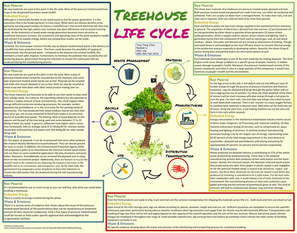 Tree House Life Cycle