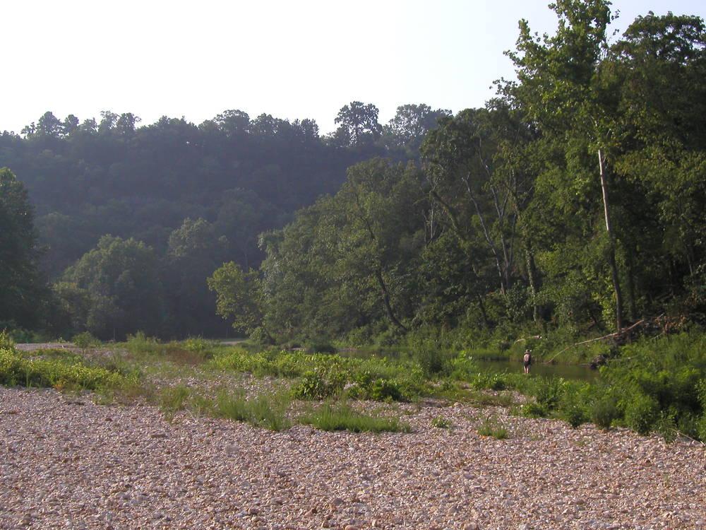 Fishing Bear Creek by Gillham