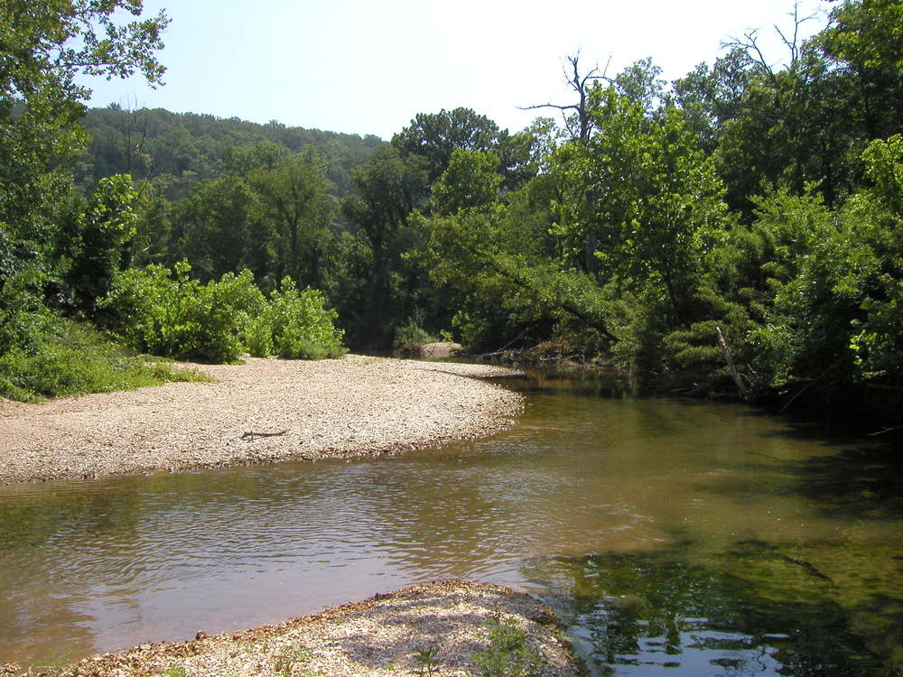 Somewhere on Malden Creek in Arkansas