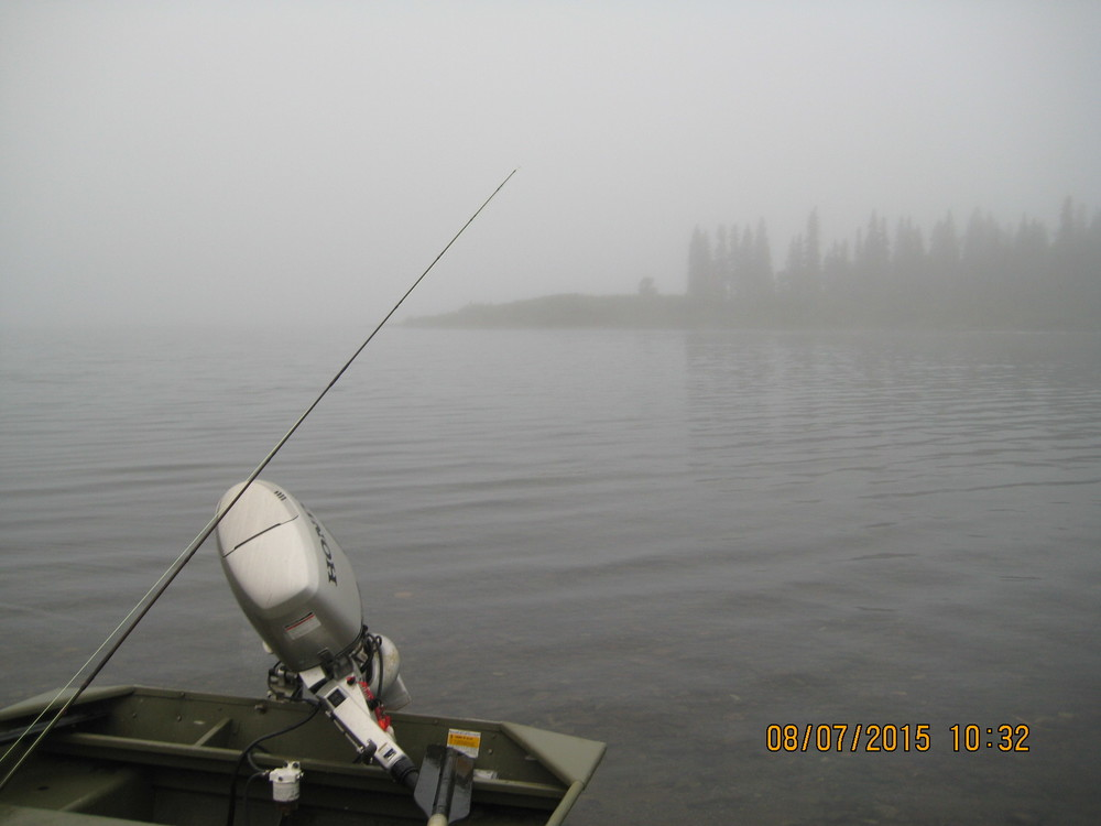 Foggy Friday morning. Magical boat ride to Sunshine Creek