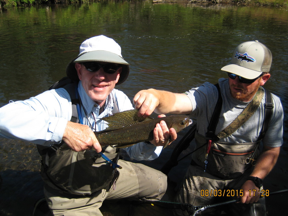 Brad-the-guide, a Grayling, and moi. FYI, this is a big Grayling (Brad said so). Would you care to guess how old this fish is? Would you believe thirty years? That's right: three-zero years. I couldn't believe it either, but Brad said so and has a gun over his shoulder. Check out the dorsal fin. Grayling are part of the trout family.